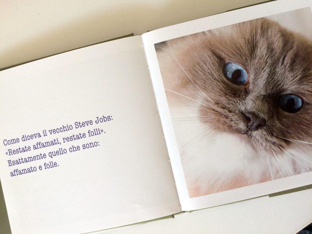 I libri per la Giornata del Gatto 2017